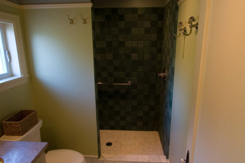 Bath Entry to Shower